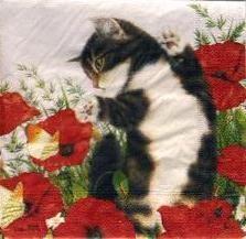 """Оригинал схемы вышивки  """"Мурлыка и маки """".  Мурлыка и маки, кошки, кот, котята, детёныши, котенок, маки, цветы."""